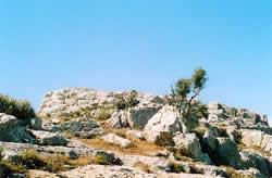 Mt. Jucktas