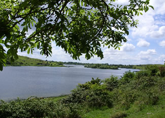 Lough Gur, where the Goddess Aine dwells