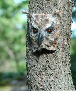 The Owlmask of Omma ©2014 Steve Danielsson