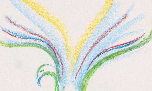 The Rainbow Birds