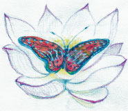 The Blue Lotus and the Butterfly, illustration by Nanri Tenney
